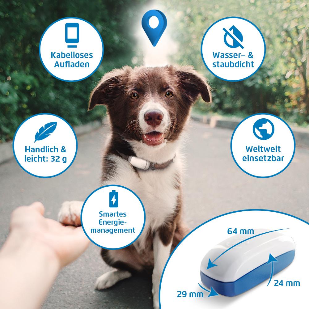 GRETA - GPS-Tracker für Hunde