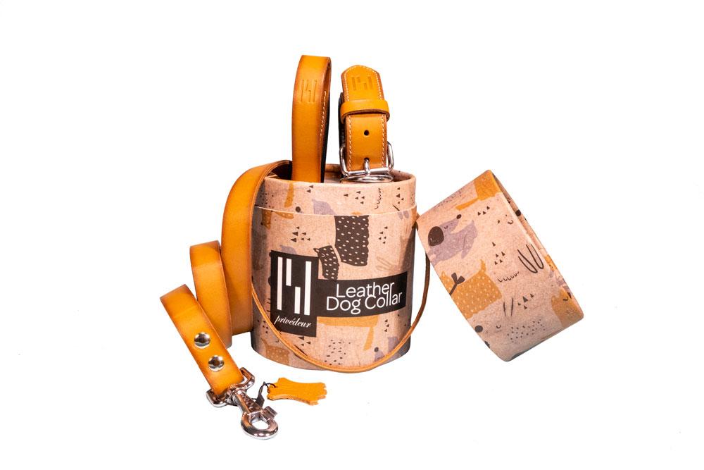 2er-Set Hundehalsband und Hundeleine Premium